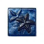 Sapphire Iridescent Starfish - 4x4